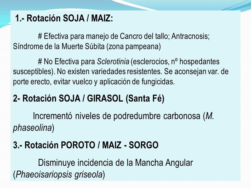 2- Rotación SOJA / GIRASOL (Santa Fé)