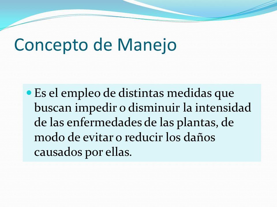 Concepto de Manejo