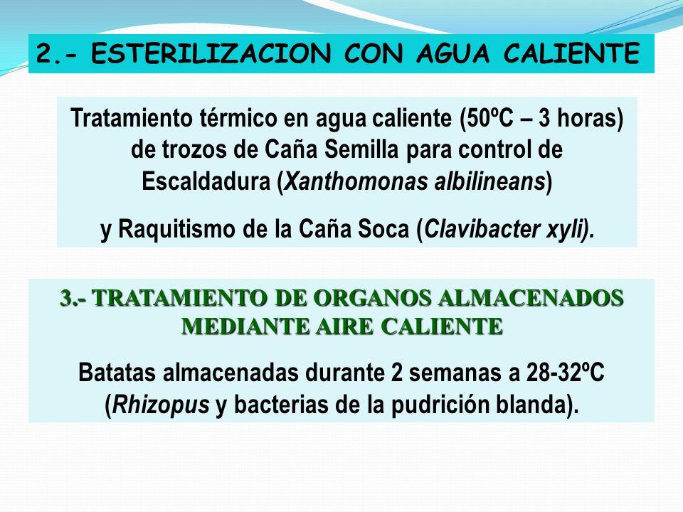 2.- ESTERILIZACION CON AGUA CALIENTE
