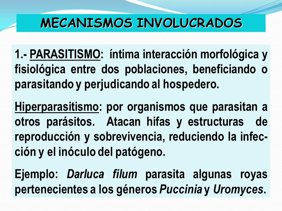 MECANISMOS INVOLUCRADOS