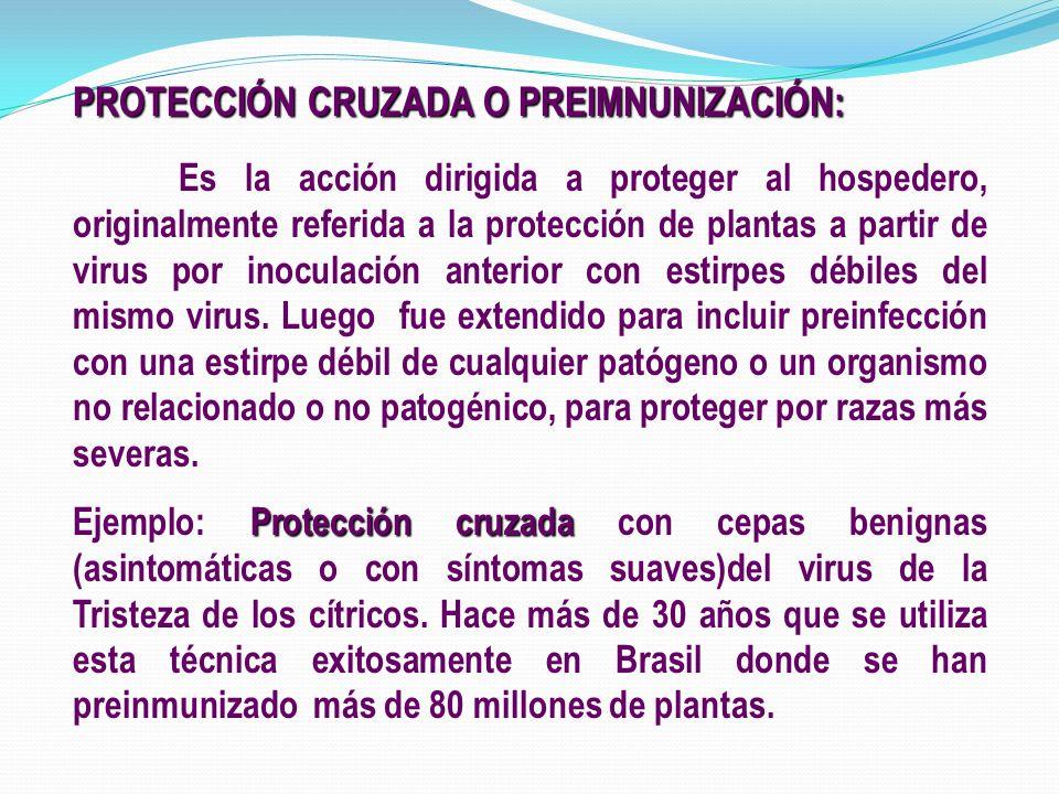 PROTECCIÓN CRUZADA O PREIMNUNIZACIÓN: