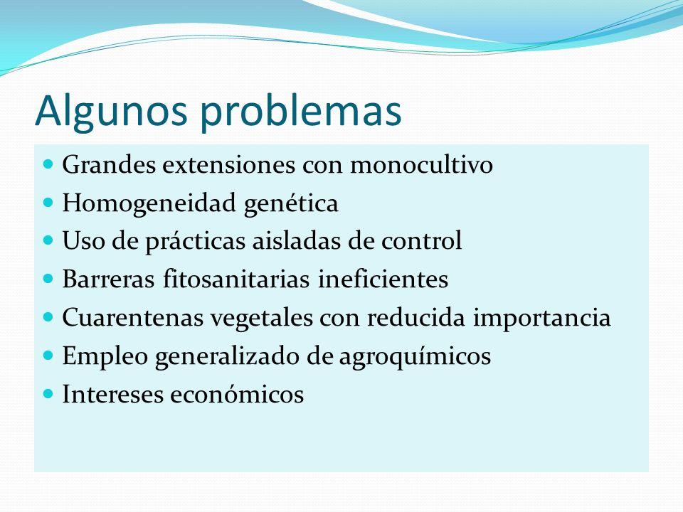 Algunos problemas Grandes extensiones con monocultivo
