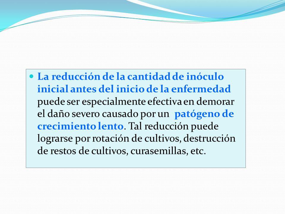 La reducción de la cantidad de inóculo inicial antes del inicio de la enfermedad puede ser especialmente efectiva en demorar el daño severo causado por un patógeno de crecimiento lento.
