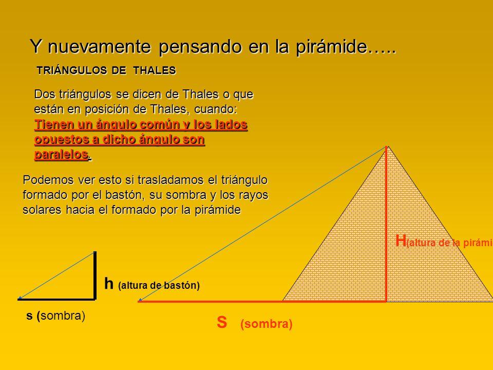 Y nuevamente pensando en la pirámide…..