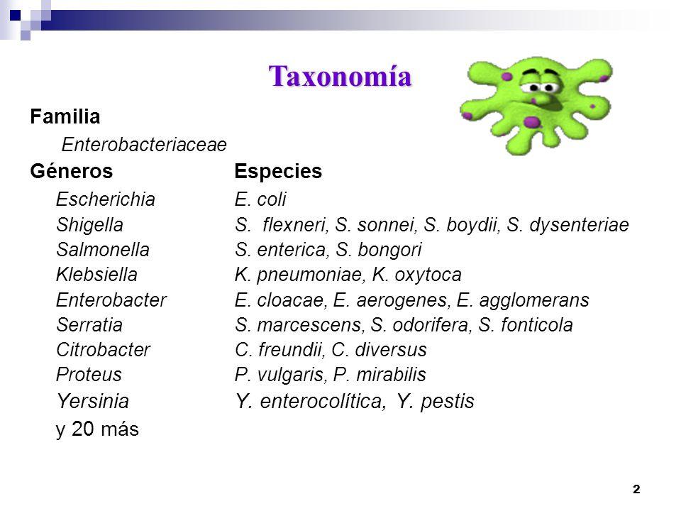 Taxonomía Familia Enterobacteriaceae Géneros Especies