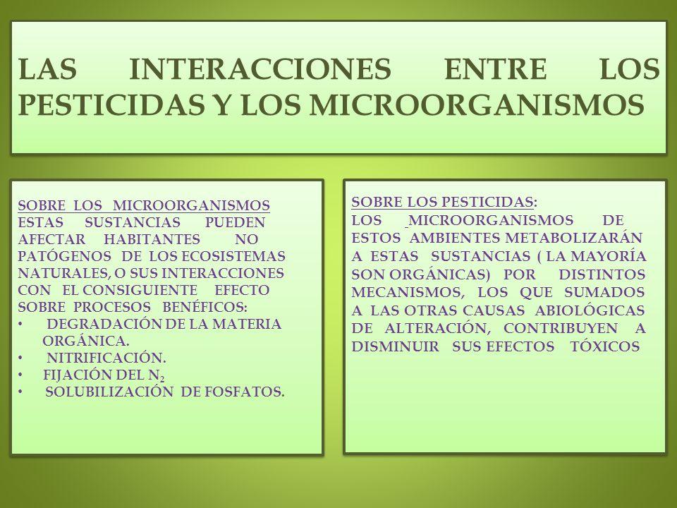 LAS INTERACCIONES ENTRE LOS PESTICIDAS Y LOS MICROORGANISMOS