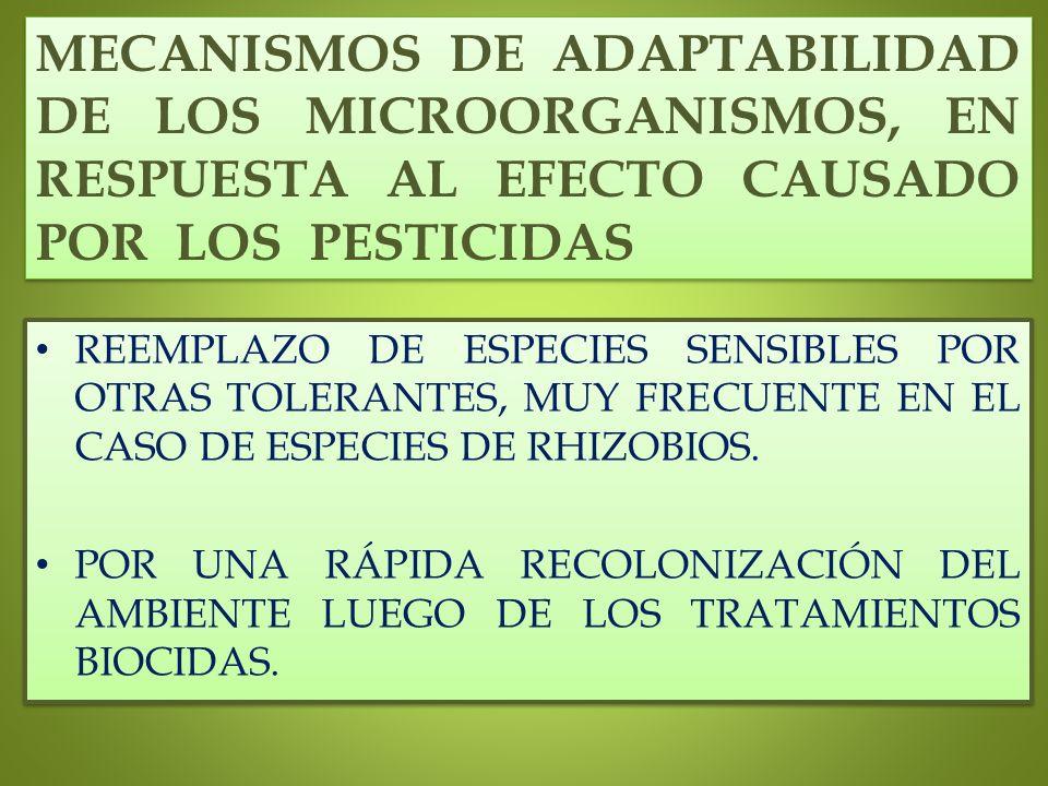 MECANISMOS DE ADAPTABILIDAD DE LOS MICROORGANISMOS, EN RESPUESTA AL EFECTO CAUSADO POR LOS PESTICIDAS