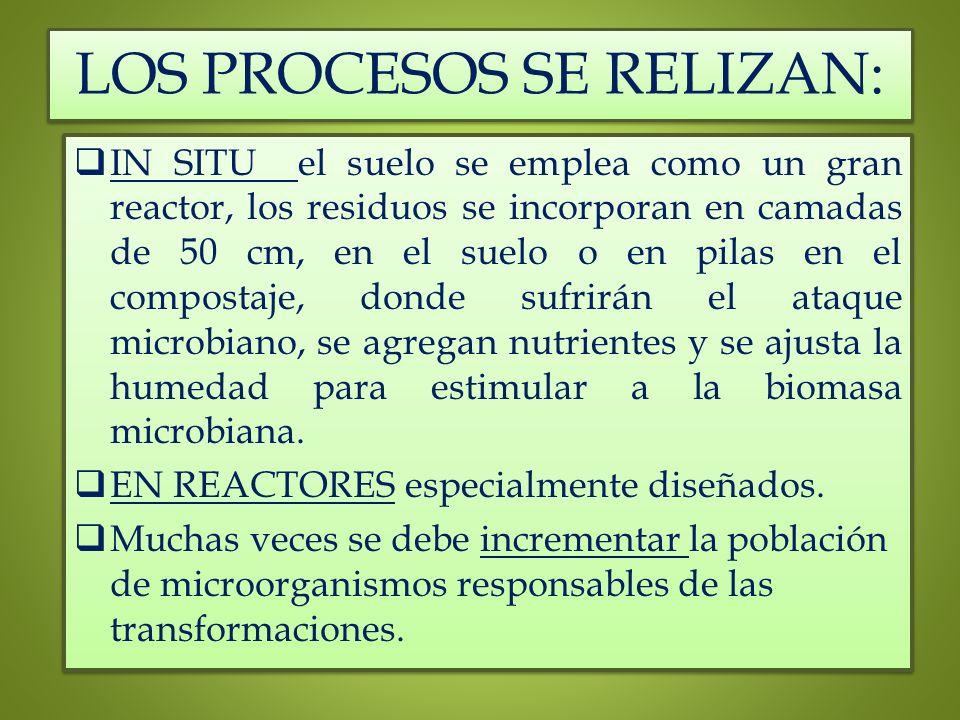 LOS PROCESOS SE RELIZAN:
