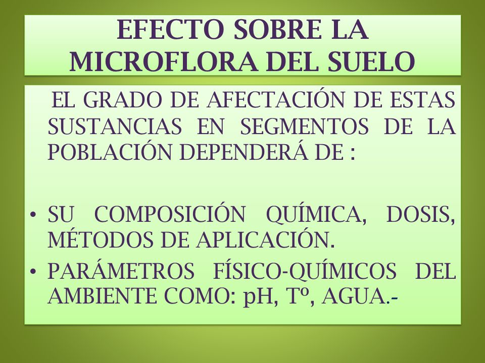 EFECTO SOBRE LA MICROFLORA DEL SUELO
