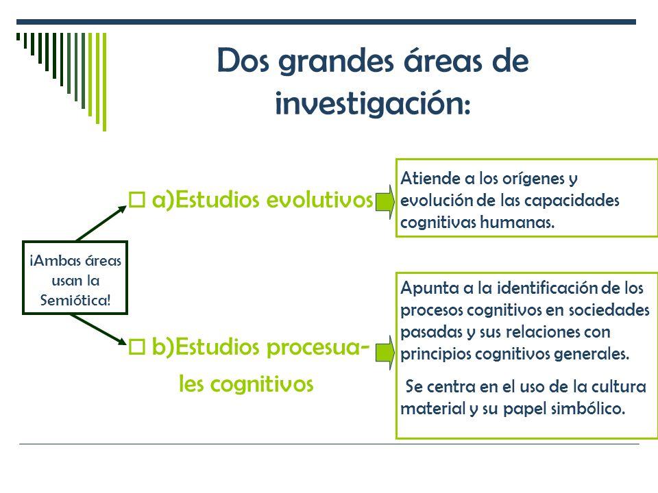 Dos grandes áreas de investigación: