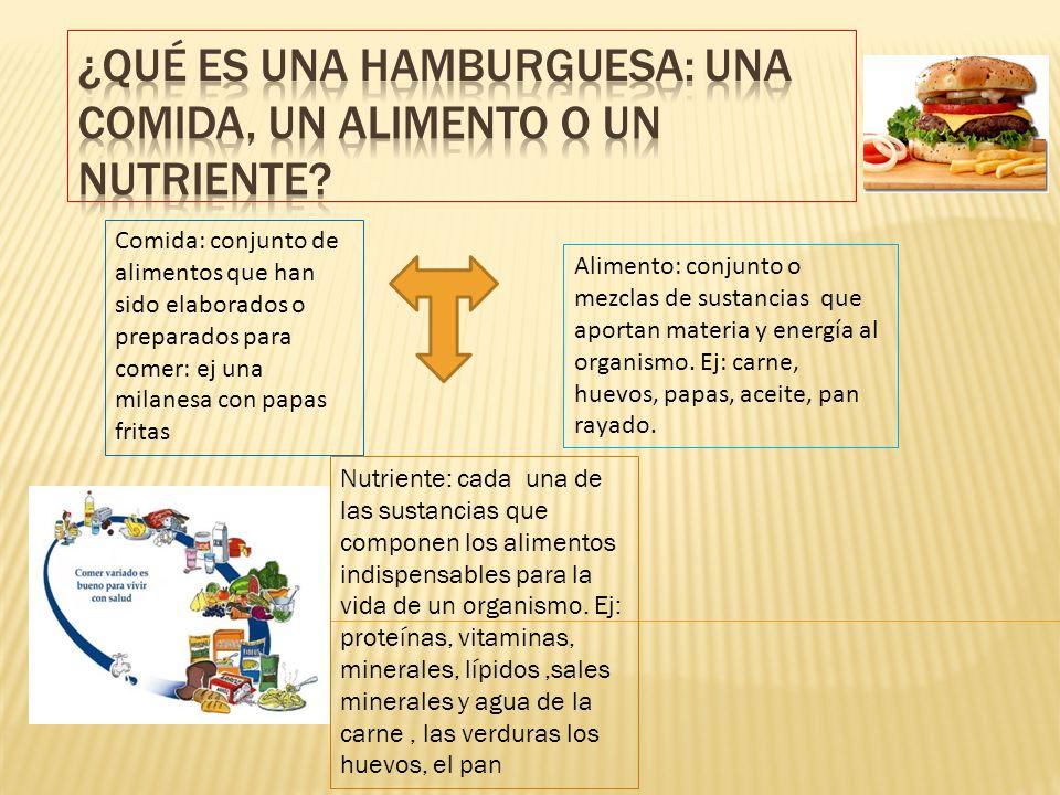 ¿Qué es una hamburguesa: una comida, un alimento o un nutriente