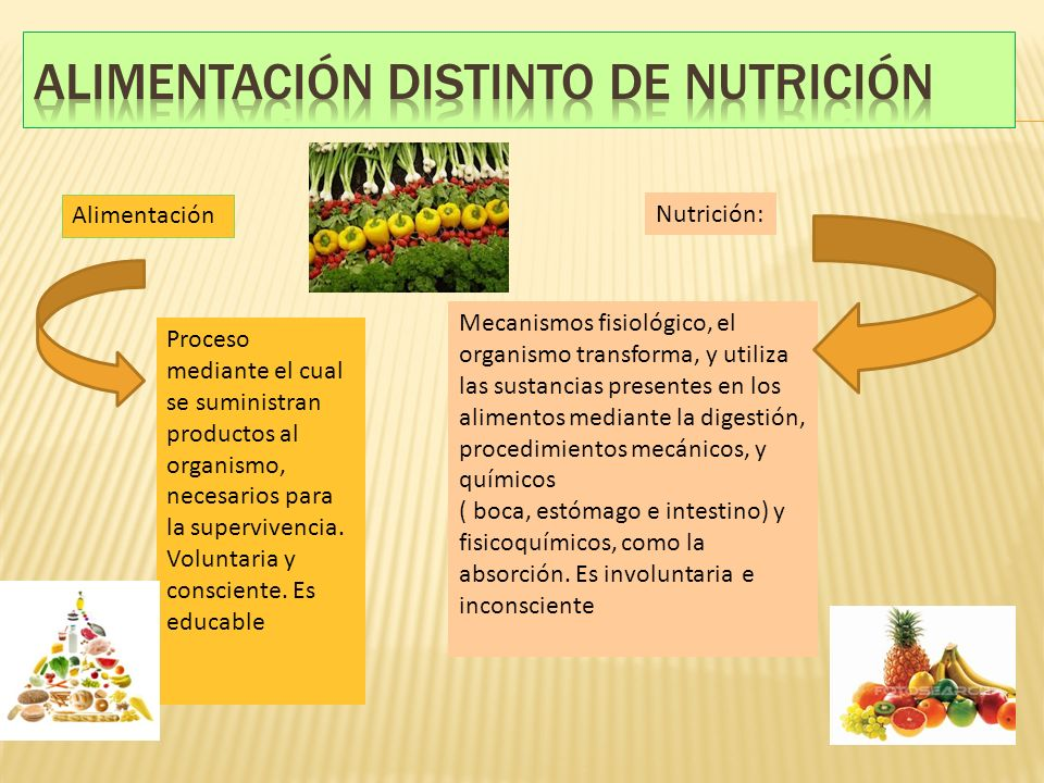 Alimentación distinto de nutrición