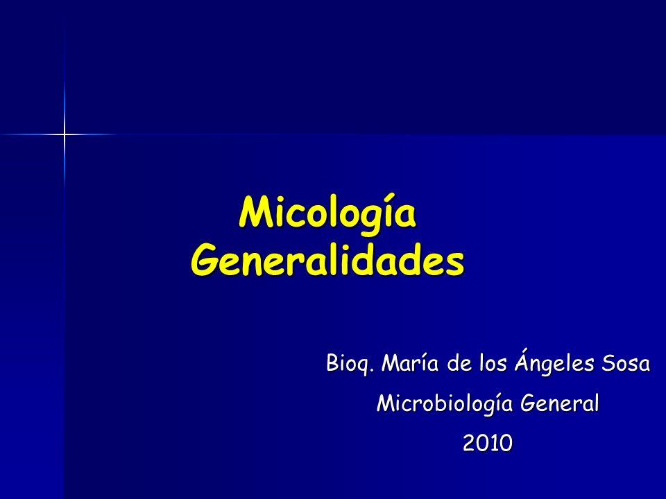 Micología Generalidades