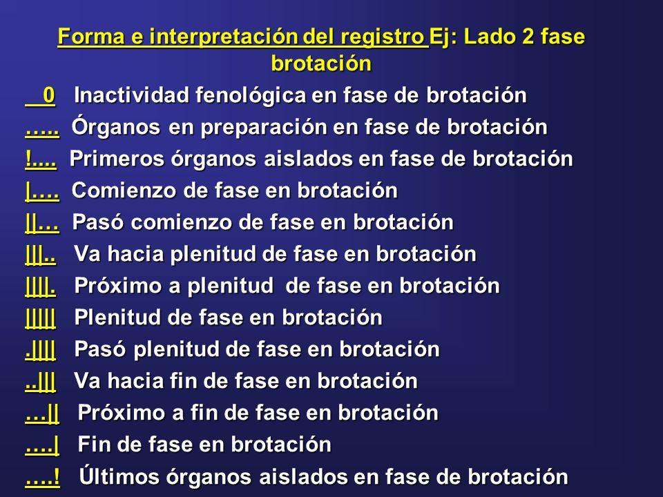 Forma e interpretación del registro Ej: Lado 2 fase brotación