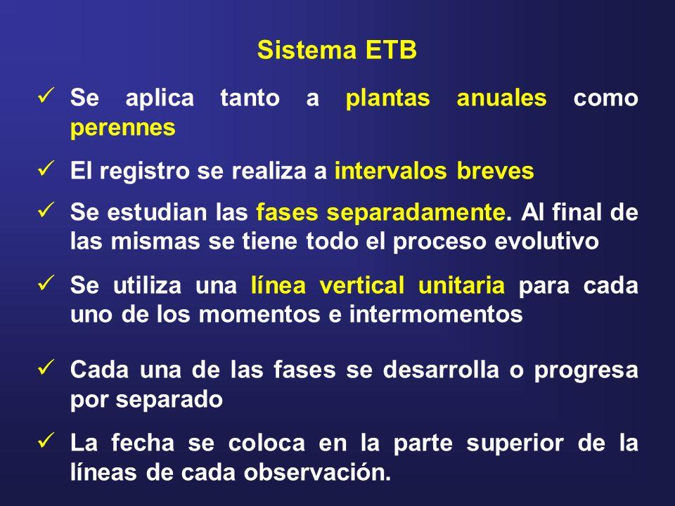 Sistema ETB Se aplica tanto a plantas anuales como perennes