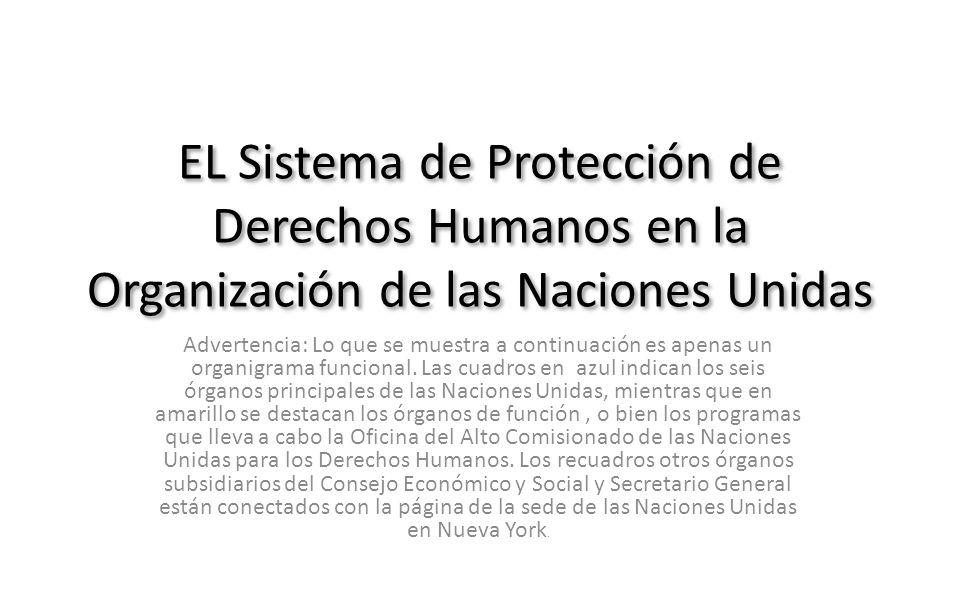 EL Sistema de Protección de Derechos Humanos en la Organización de las Naciones Unidas