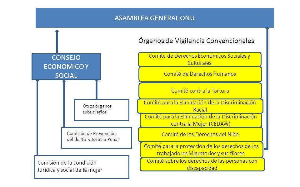Órganos de Vigilancia Convencionales