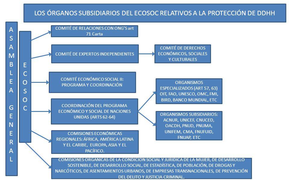 LOS ÓRGANOS SUBSIDIARIOS DEL ECOSOC RELATIVOS A LA PROTECCIÓN DE DDHH