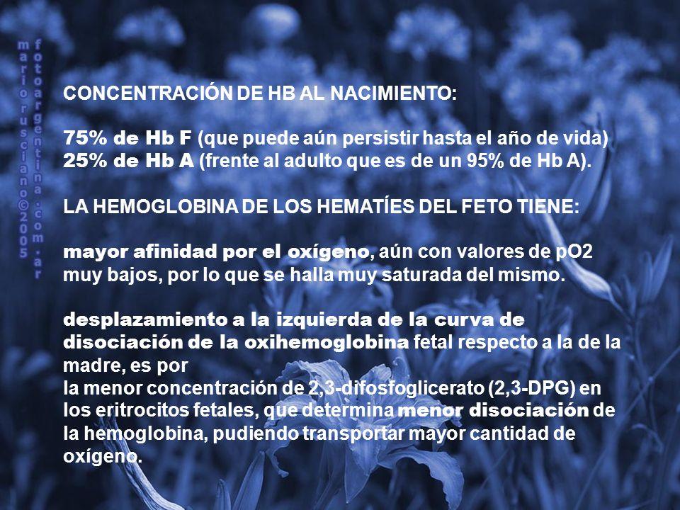 CONCENTRACIÓN DE HB AL NACIMIENTO: