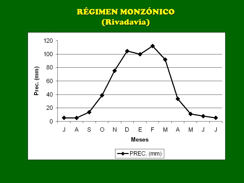 RÉGIMEN MONZÓNICO (Rivadavia)