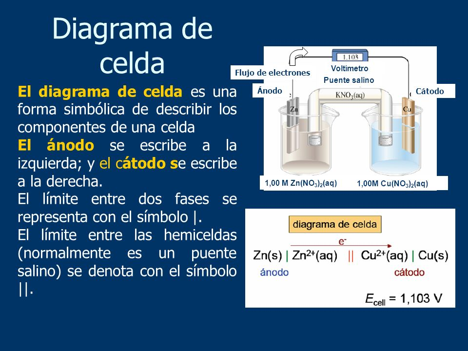 Diagrama de celda Cátodo. Ánodo. Voltímetro. 1,00M Cu(NO3)2(aq) 1,00 M Zn(NO3)2(aq) Flujo de electrones.