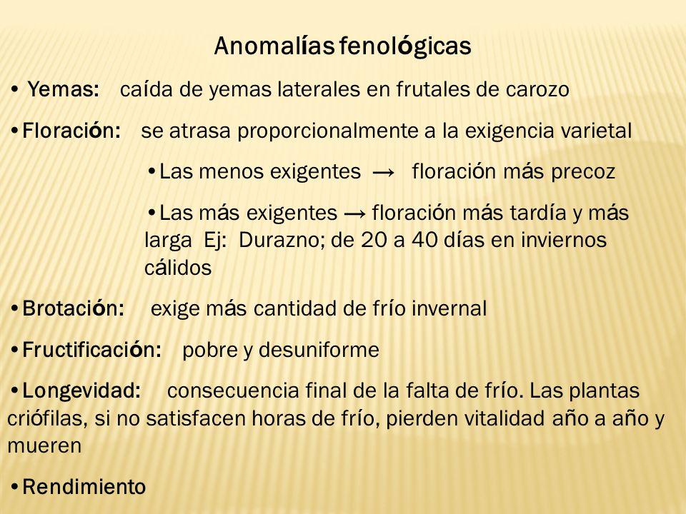 Anomalías fenológicas