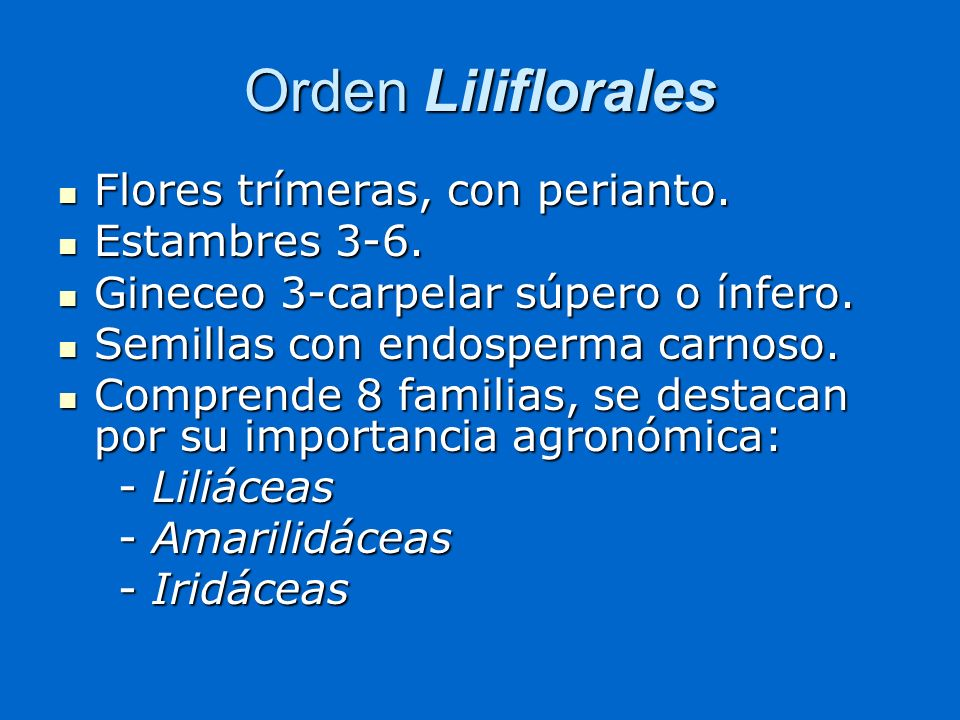 Orden Liliflorales Flores trímeras, con perianto. Estambres 3-6.