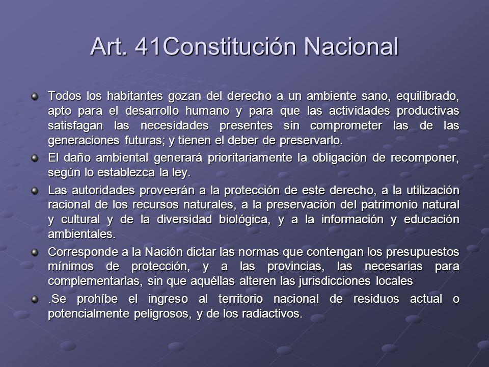 Art. 41Constitución Nacional