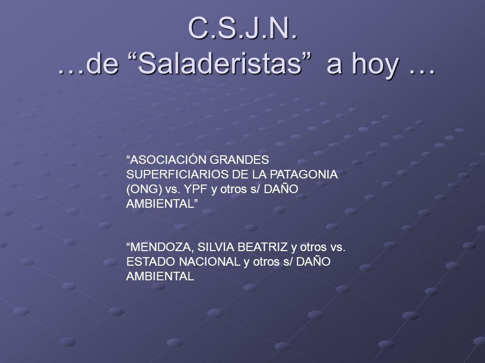C.S.J.N. …de Saladeristas a hoy …