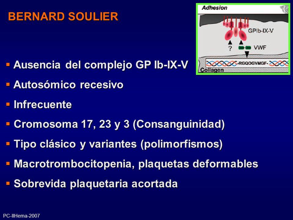 BERNARD SOULIER Ausencia del complejo GP Ib-IX-V Autosómico recesivo