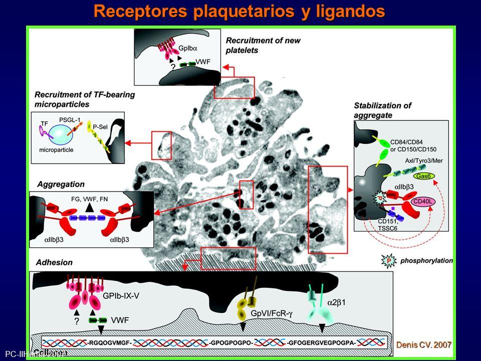 Receptores plaquetarios y ligandos
