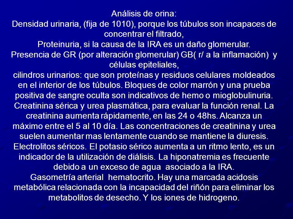 Proteinuria, si la causa de la IRA es un daño glomerular.