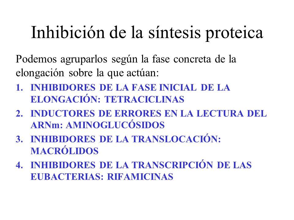 Inhibición de la síntesis proteica