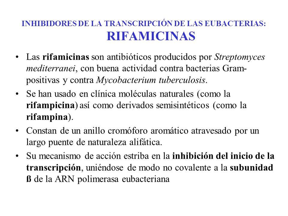 INHIBIDORES DE LA TRANSCRIPCIÓN DE LAS EUBACTERIAS: RIFAMICINAS