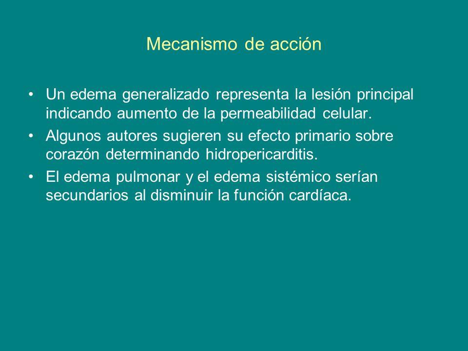 Mecanismo de acciónUn edema generalizado representa la lesión principal indicando aumento de la permeabilidad celular.