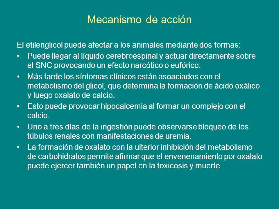 Mecanismo de acción El etilenglicol puede afectar a los animales mediante dos formas: