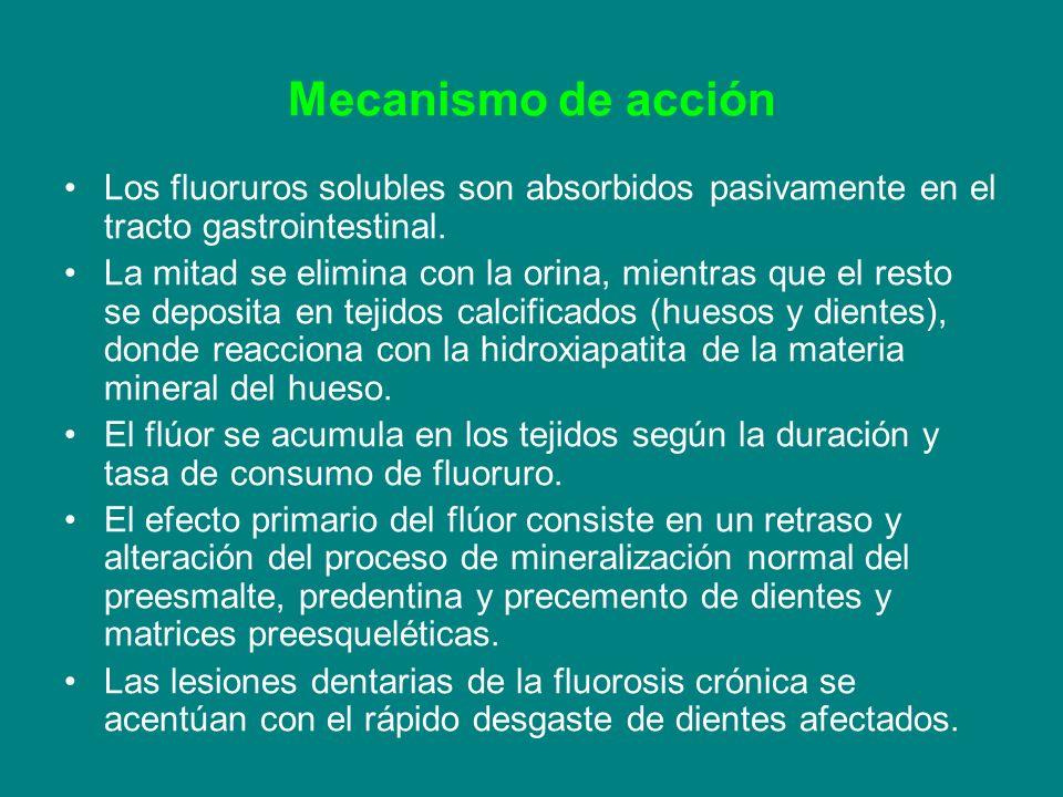 Mecanismo de acción Los fluoruros solubles son absorbidos pasivamente en el tracto gastrointestinal.