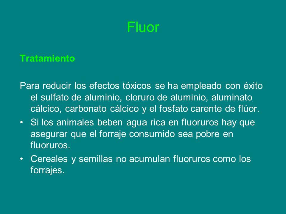 Fluor Tratamiento.
