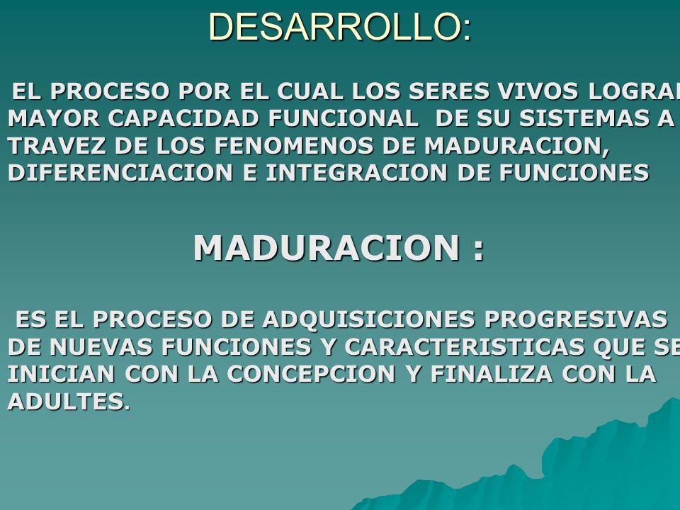 DESARROLLO: MADURACION :