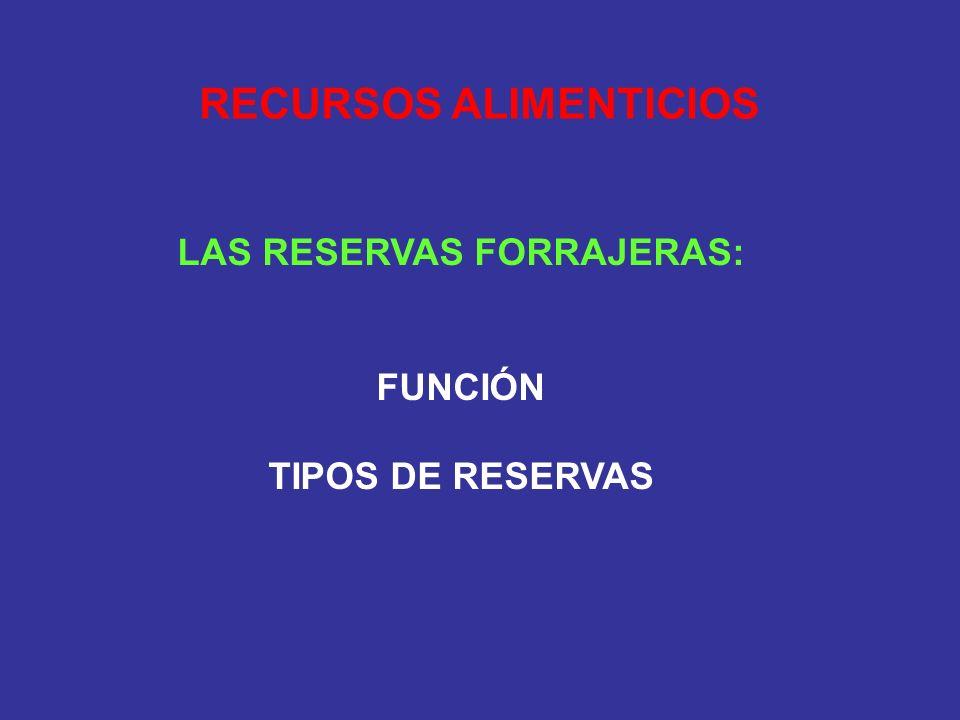 RECURSOS ALIMENTICIOS LAS RESERVAS FORRAJERAS: