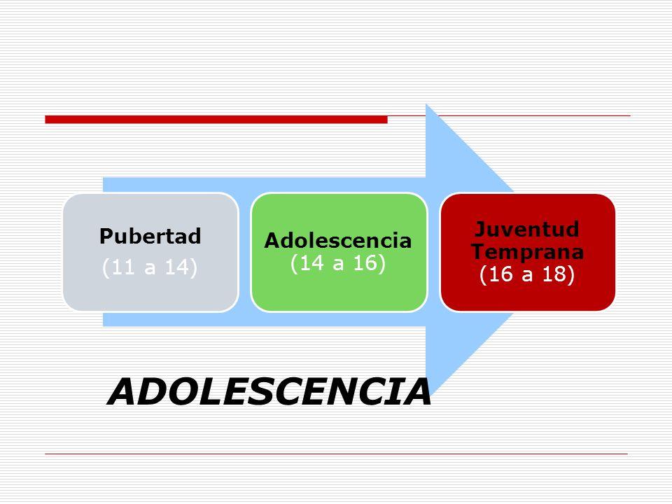 ADOLESCENCIA Juventud Temprana (16 a 18) Pubertad