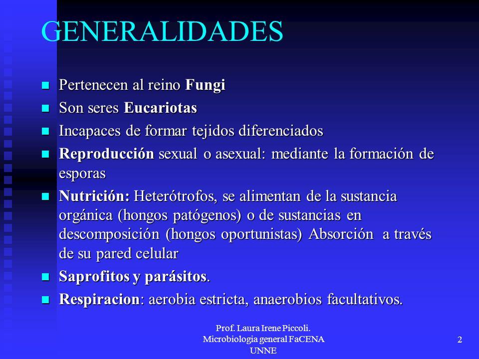 Prof. Laura Irene Piccoli. Microbiologia general FaCENA UNNE