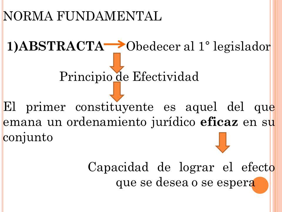 NORMA FUNDAMENTAL 1)ABSTRACTA Obedecer al 1° legislador. Principio de Efectividad.