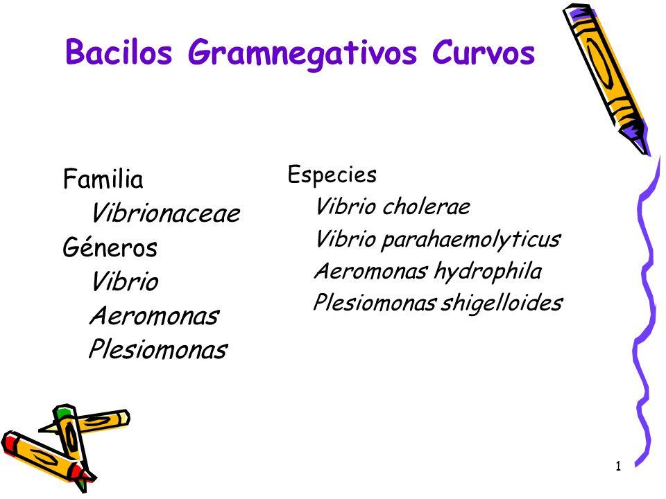 Bacilos Gramnegativos Curvos