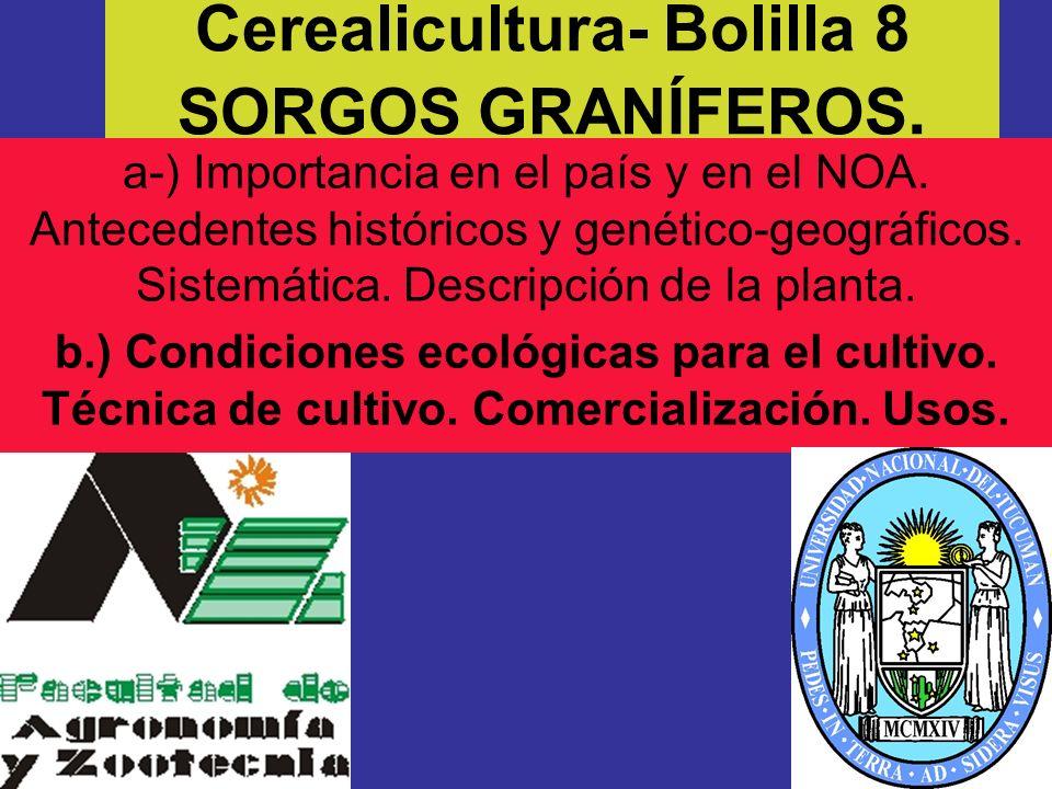 Cerealicultura- Bolilla 8 SORGOS GRANÍFEROS.
