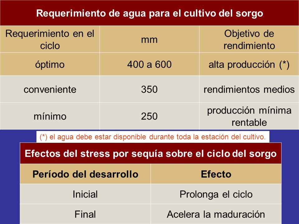Requerimiento de agua para el cultivo del sorgo
