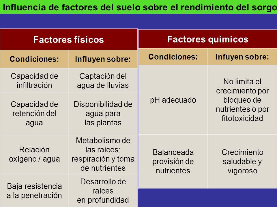 Factores físicos Factores químicos