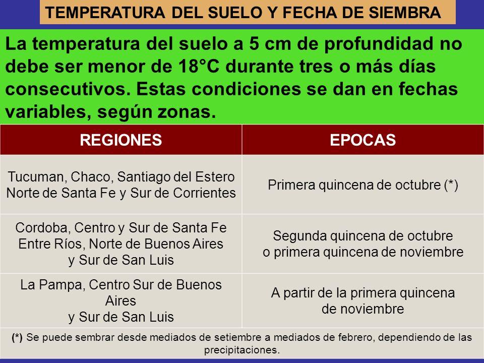 TEMPERATURA DEL SUELO Y FECHA DE SIEMBRA