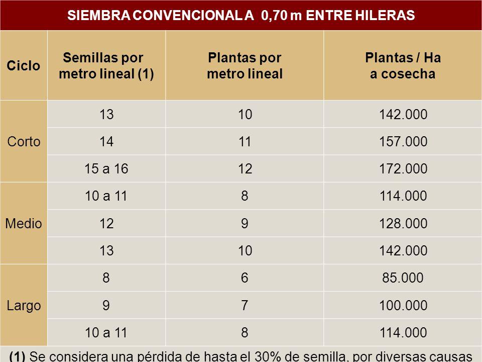 SIEMBRA CONVENCIONAL A 0,70 m ENTRE HILERAS Ciclo