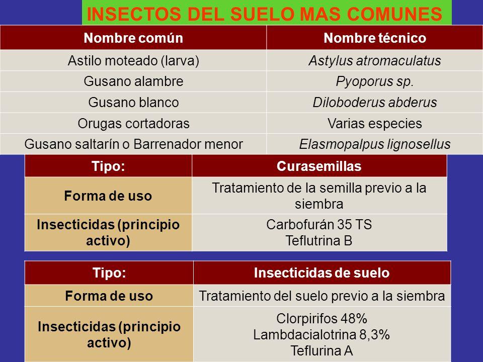 Insecticidas (principio activo) Insecticidas (principio activo)